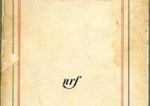 Edebiyat- Felsefe İlişkisi- Farklılıklar- Ortaklıklar Camus- Yabancı- Fransızca