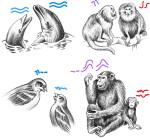 Dil nedir Tanımı Anlamı Ne demektir Dilin Özellikleri Hakkında Yazı