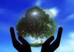 Küresel Isınma Nedir Sebepleri Önlemleri Çözümleri Zararları Sorunları ağaç dünya