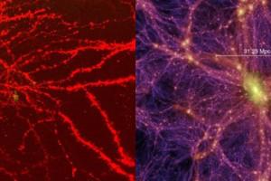 Evrenin Oluşumu- Doğuşu- Kozmogoni Beyin ve Evren Uzay