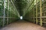 Varoluşçuluk Nedir Felsefes Kapalı yeşil bahçe