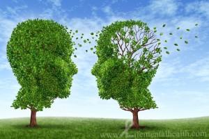 Bilişsel Gelişim Nedir çocuk ağaç