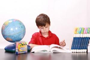 eğitimin işlevi