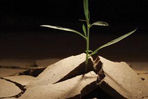 Geleceğe Umutla Bakmak